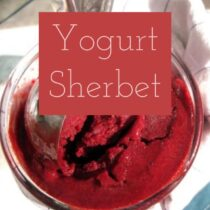Yogurt Sherbet